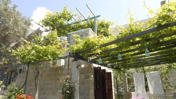 Casa di Oliveto   studio 1/3   Mornar Travel   Petrovac Montenegro