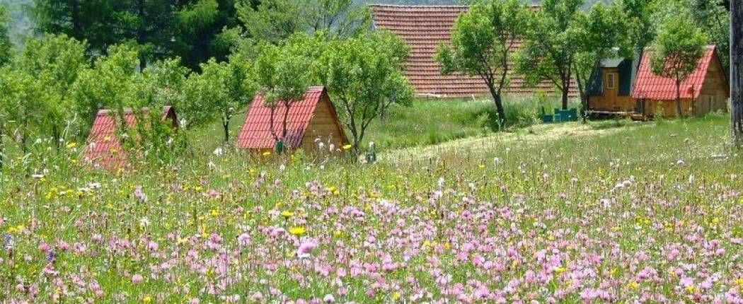 Ethno Village Montenegro Brezna Pluzine   Cipa Travel