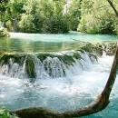 Gastronomy National park Plitvice lakes