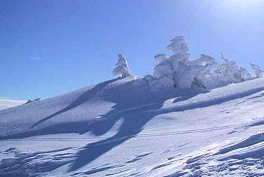 Ski resort  Vlasic