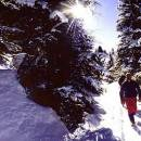 Skigebiet Val di Fiemme
