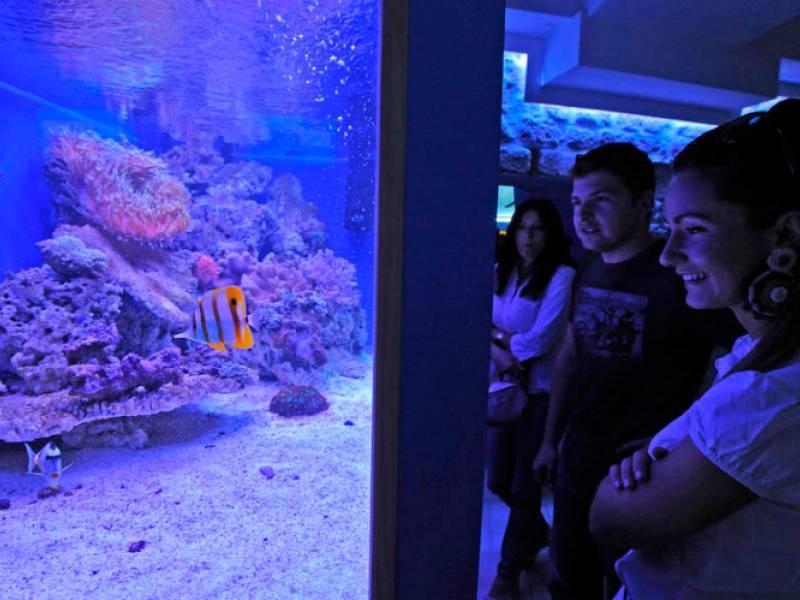 Aquarium Šibenik