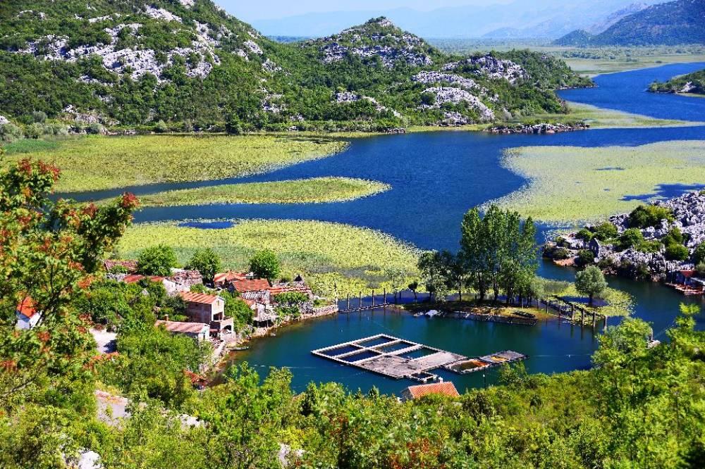 Skadarsko jezero | dnevna varijanta  |  Montenegro | Cipa travel