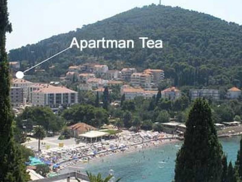 Apartman Tea
