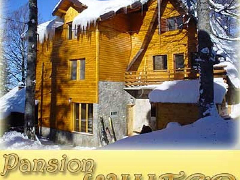 Pansion Winter