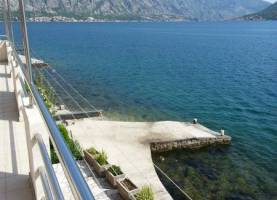 Apartments Dakovic Drazin Vrt | Kotor | Cipa Travel