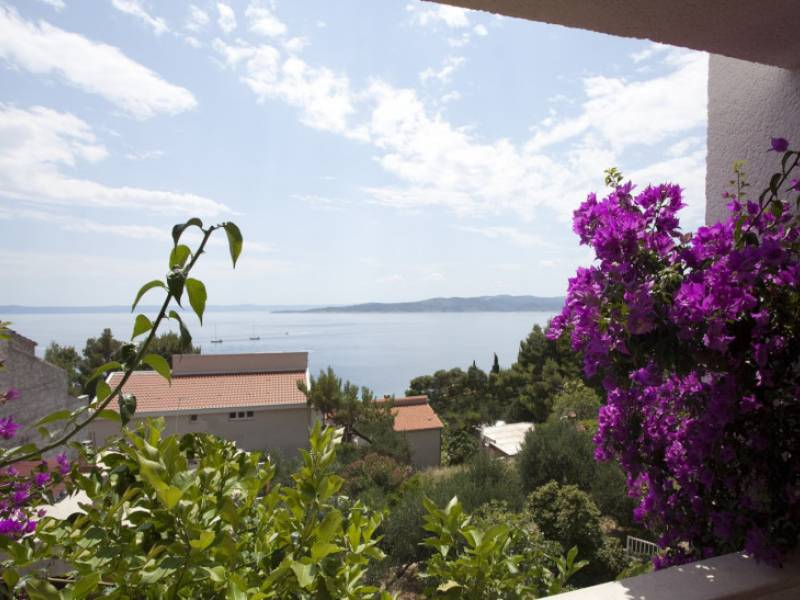 Počitiška hiša z bazenom, Baška Voda, Dalmacija, Hrvaška