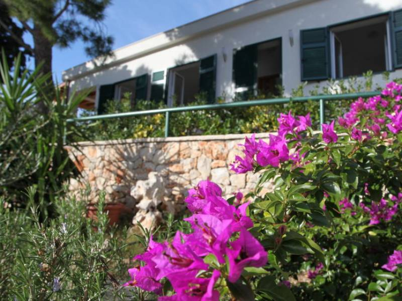 Holiday house Milna, island Brac, Dalmatia, Croatia