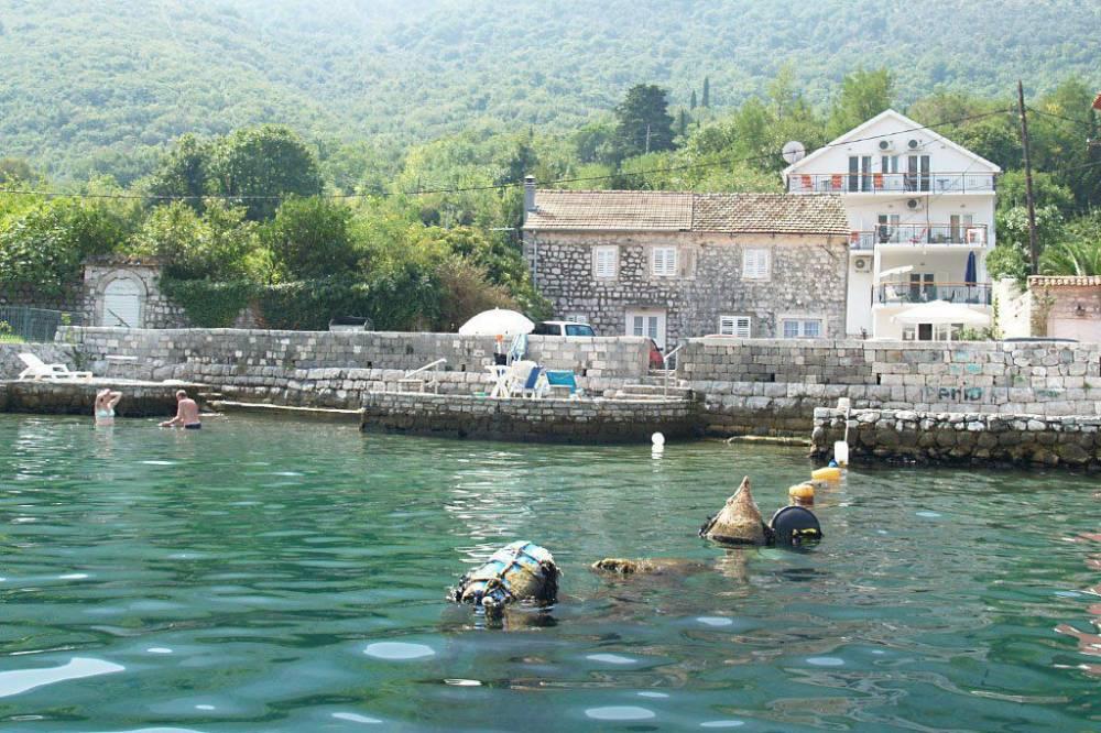 Apartmani Djurovic Stoliv   Kotor   Crna Gora   Cipa Travel